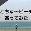 【四国中央市海水浴場】寒川豊岡海浜公園ふれあいビーチに行ってきた