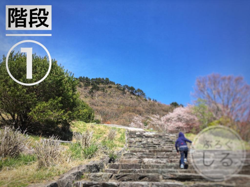 翠波高原ローラーすべり台への道のり